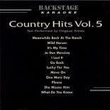 Backstage Karaoke Country Hits Vol.5 - Cdg Disc BS 3117 - Die rockt den Westen