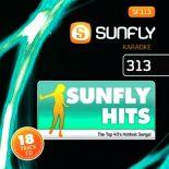 Sunfly Karaoke Hits CDG Vol 313 - Top 40 Karaoke Playbacks