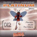 Sunfly Karaoke Platinum Series Volume 12 - Hardcore