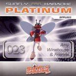 Sunfly Karaoke Platinum Series Volume 23 - CD+G Karaoke Playbacks