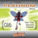 Sunfly Karaoke Platinum Series Volume 16 - Rarität