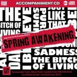 Spring Awakening - Playback Karaoke - CDG